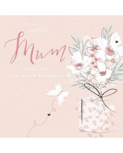 To a special Mum with love on your Birthday