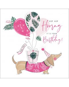 Hip Hip Hooray, it's your Birthday!