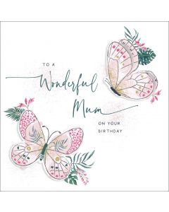 To a wonderful Mum on your Birthday