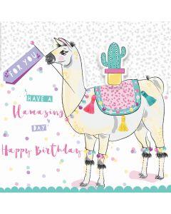 Have a Llamazing Day, Happy Birthday