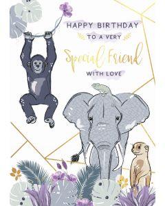 Happy Birthday to a very special Friend