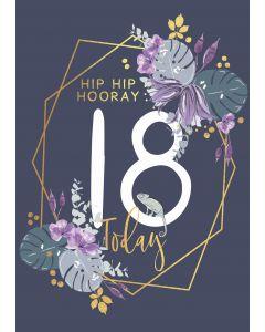 Hip Hip Hooray, 18 Today